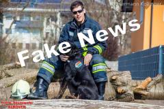 Rettungshundefake