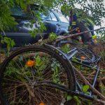 Klemmradfahrer070917_Kollinger-5