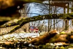 Sturmbaum100220_Kollinger-1