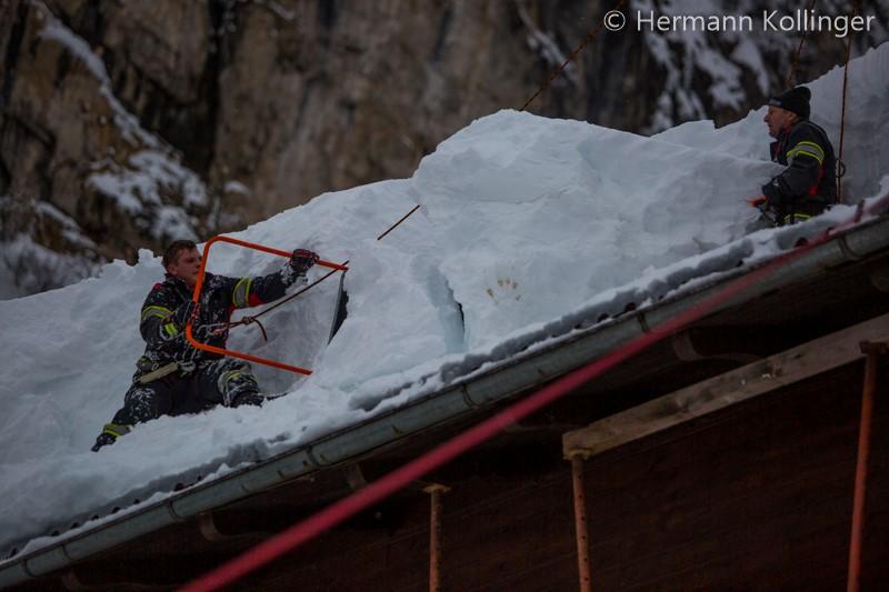 SchneeRosenau130119_Kollinger-83