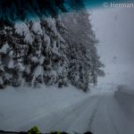 SchneeRosenau130119_Kollinger-61