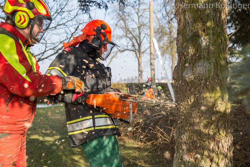 Kettensaegeschulung140215_Kolli-59