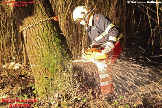 05.11.2009: Arbeiten mit der Motorkettensäge