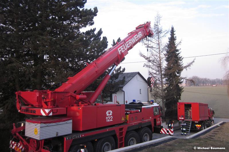 Entfernen eines Baumes (C) Baumann