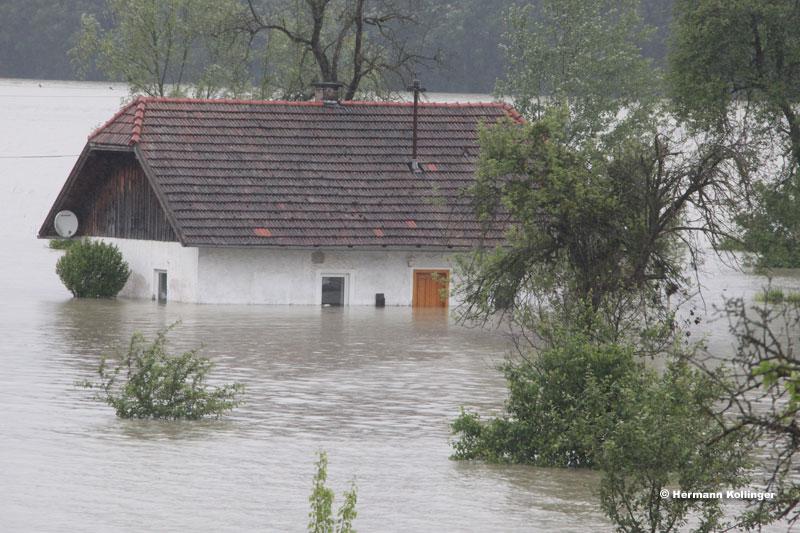 Hochwasser / Foto: Kolli
