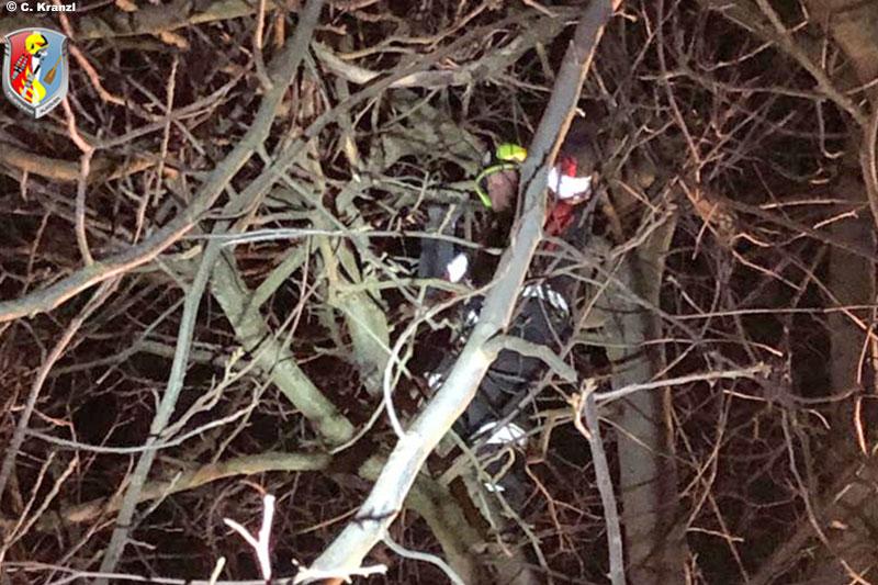 28.02.2020: Zwei Katzen in Straßham vom Baum geholt